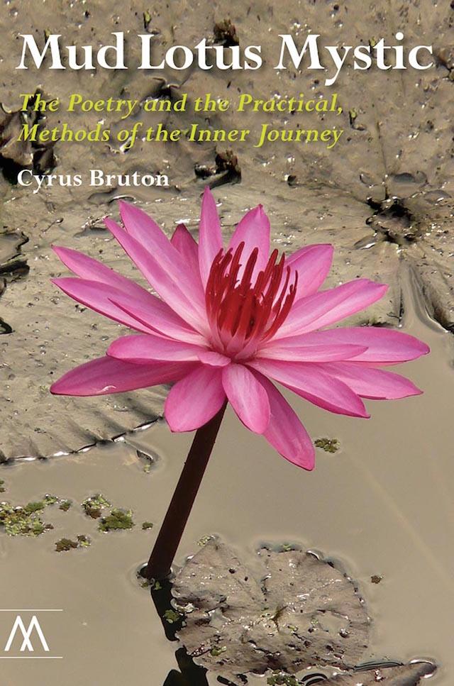 Mud lotus mystic by cyrus bruton mightylinksfo